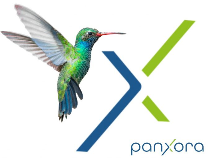 panxora cryptocurrency exchange logo